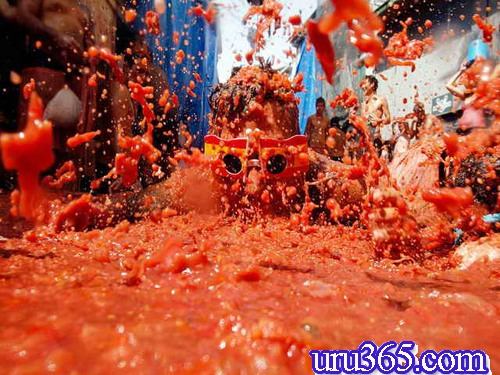 حیف و میل و اسراف فستیوال گوجه فرنگی شلیک گوجه فرهنگی اسپانیا
