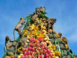 جشنواره میمونها فستیوال میمون ها در تایلند اسراف مواد غذایی اسراف گرایانه آداب جاهلی