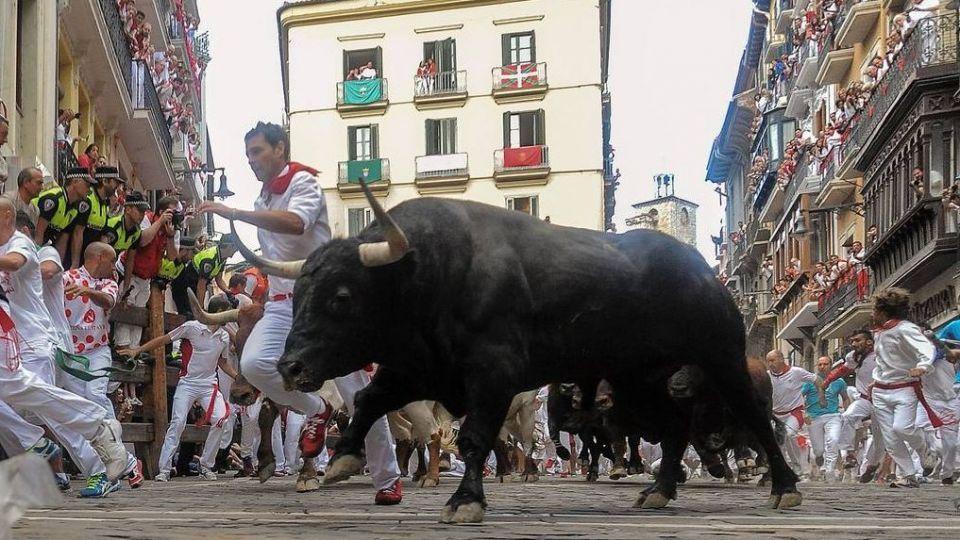 آزاد کردن گاوهای وحشی و آسیبهای جدی بدنی جاهلیت مدرن